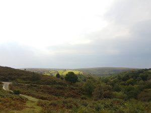 original photo for Empty Landscape VII